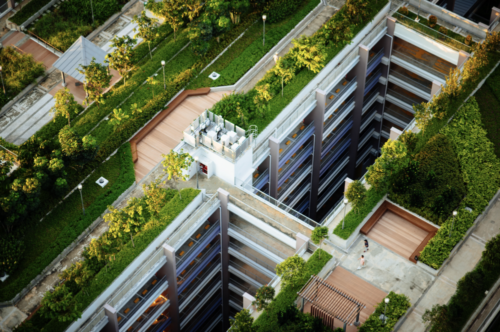 green rooftops can help alleviate the climate crisis