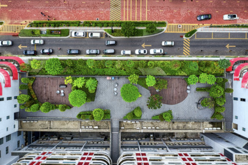 green rooftops for sustainable cities